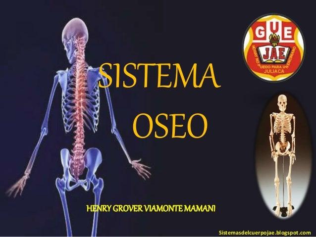 SISTEMA OSEO Sistemasdelcuerpojae.blogspot.com HENRYGROVERVIAMONTEMAMANI