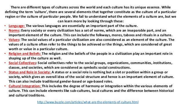 What are the elements of culture?