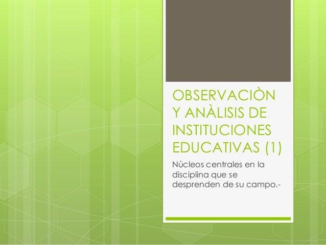OBSERVACIÒN Y ANÀLISIS DE INSTITUCIONES EDUCATIVAS (1)  Nùcleos centrales en la disciplina que se desprenden de su campo.-
