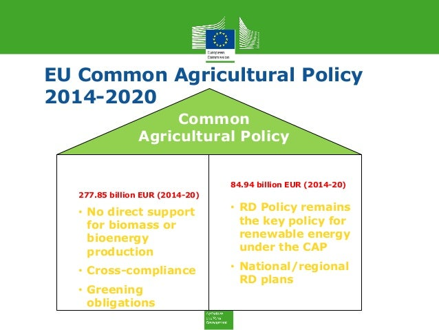 Common agricultural policy cap essay