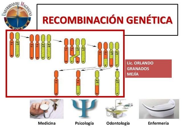 Ppt tema 5 (5 horas) recombinación genética. 1. Recombinación.