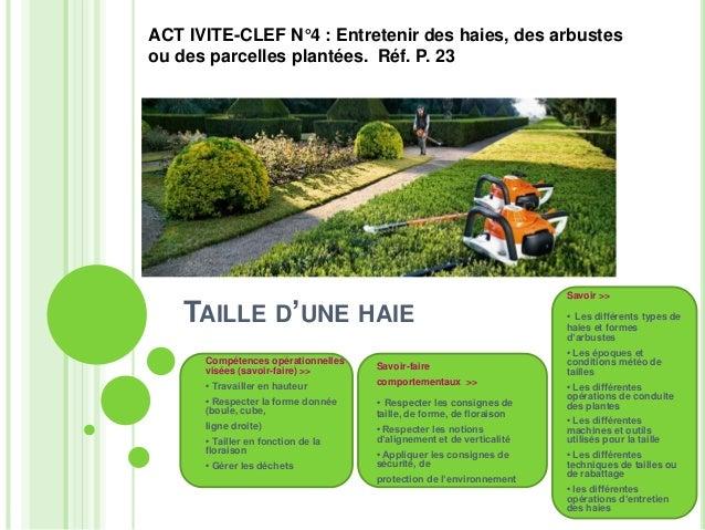 ACT IVITE-CLEF N°4 : Entretenir des haies, des arbustes  ou des parcelles plantées. Réf. P. 23  TAILLE D'UNE HAIE  Compéte...