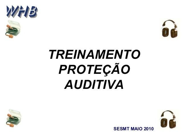 TREINAMENTO PROTEÇÃO AUDITIVA SESMT MAIO 2010
