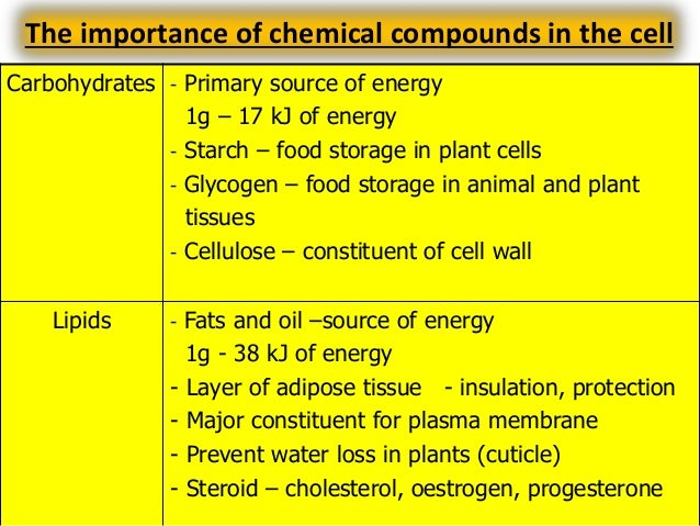 Archive for category Chapter 4: Chemical Composition of the Cell