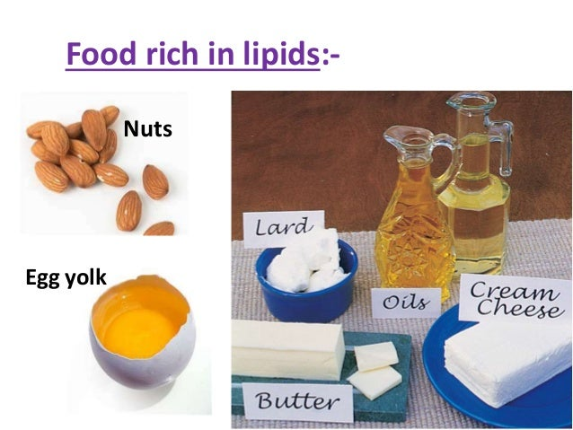 What Foods Contain High Lipids