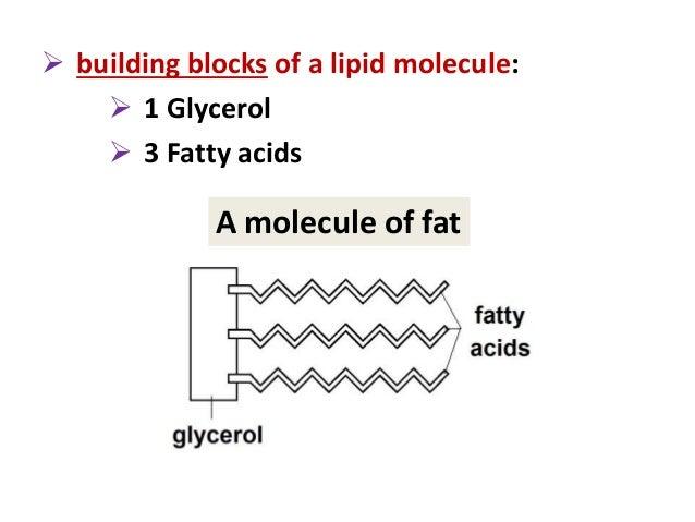 Building Block Molecule For Lipids