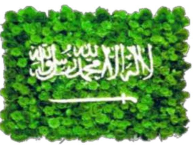 نشأت الدولة السعودية الحديثة في البدء على مساحة  حول منطقة الرياضعام 1902 ، ففي 15 يناير 1902  سيطر عبد العزيز بن عبد الرح...