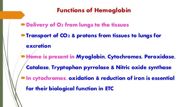 What is the major function of hemoglobin?