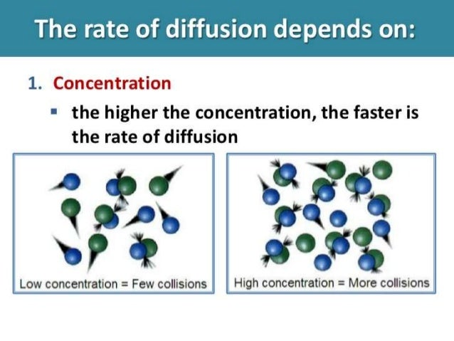 rate of osmosis concentration So, the concentration gradient was at its maximum, for this reason the highest rate of osmosis took place at this concentration still, as the sucrose concentration altered to lesser values the loss in mass from the potato also decreased.