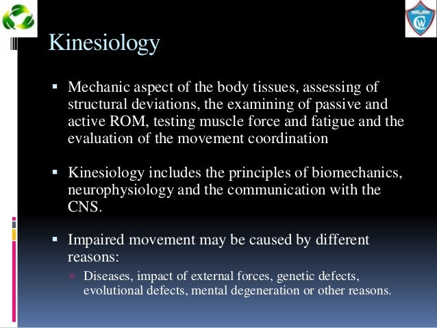 a study of the effects of kinesio tape on the human body Kinesiology, also known as human kinetics, is the scientific study of human movement kinesiology addresses physiological, mechanical, and psychological mechanisms 12 trusted by millions, kt tape is used most commonly for itbs, runner's knee, tennis elbow, shin splints, and hamstring strain 13 there are many types of advanced careers in kinesiology.