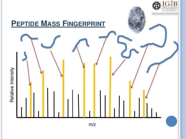 1.proteomics coursework-3 dec2012-aky