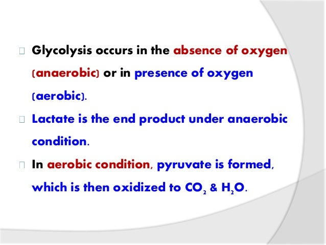 end product of glycolysis under anaerobic conditions