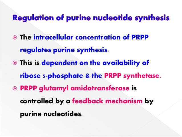 biosynthesis of purine nucleotides Nucleotide metabolism : 161 it undergoes degradation like other purine nucleotides and as such will contribute to uric acid production.