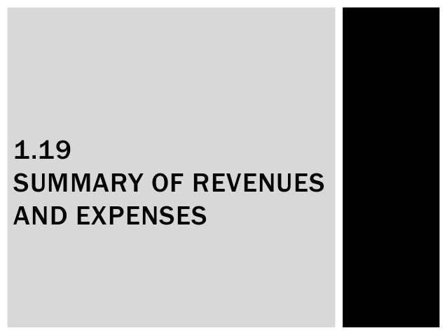 1.19 SUMMARY OF REVENUES AND EXPENSES