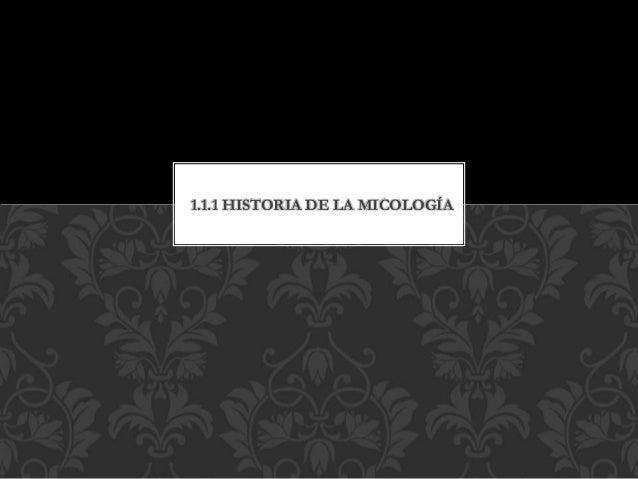 1.1.1 HISTORIA DE LA MICOLOGÍA