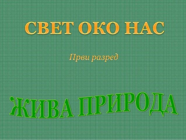 ВргањПапрат Козлац (отровна биљка) БоровницаШумска јагода Шумска малина Шумска купина