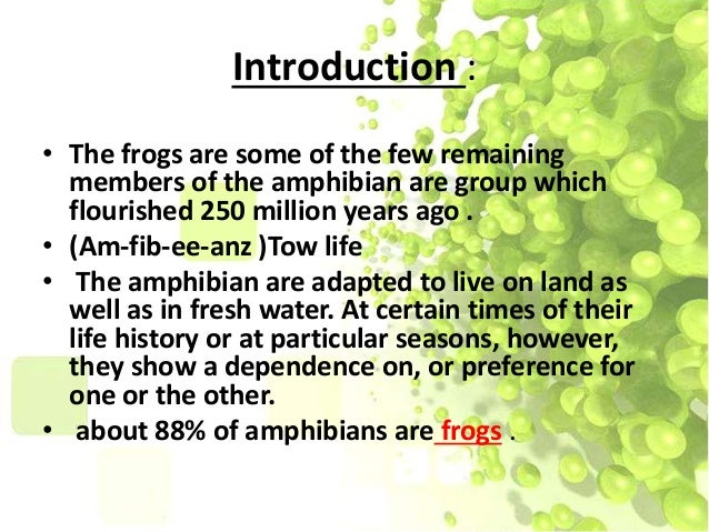 Aquatic animals - frogs