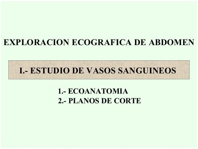 EXPLORACION ECOGRAFICA DE ABDOMEN I.- ESTUDIO DE VASOS SANGUINEOS 1.- ECOANATOMIA 2.- PLANOS DE CORTE