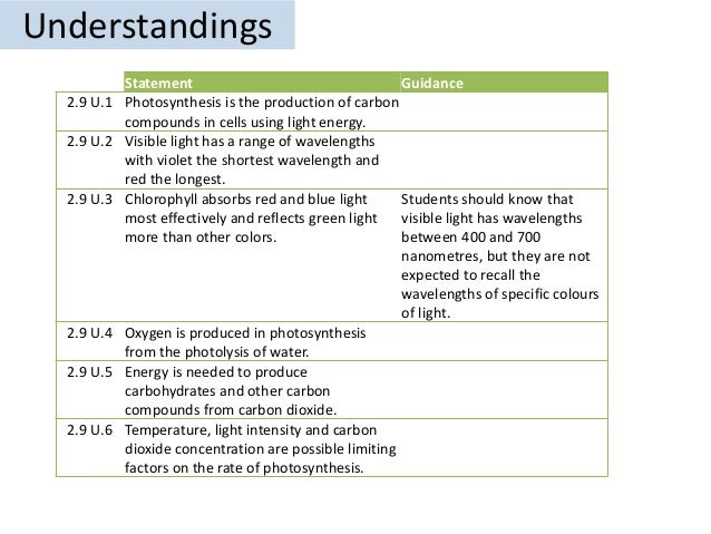 ib bio photosynthesis dcp Ib biology photosynthesis 2015 1 topic four : photosynthesis http:// sodandmulchcom/wp-content/uploads/2012/03/oak-treejpg 2 essential.