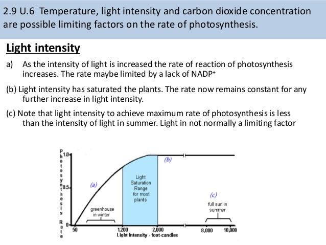 Carbon dating ib biology