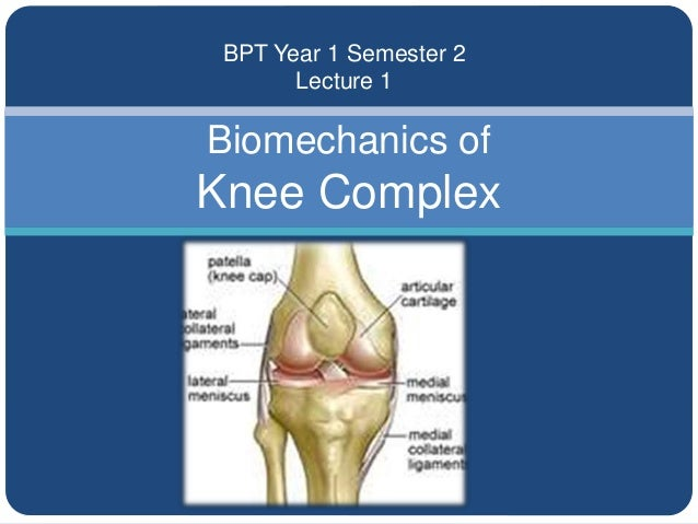 Biomechanics of Knee Complex BPT Year 1 Semester 2 Lecture 1
