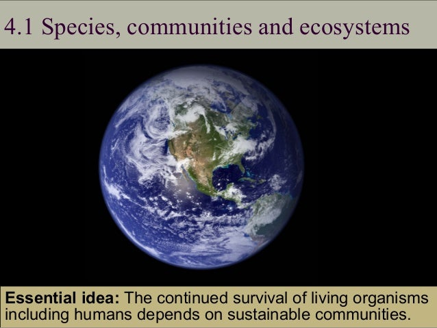 IB Biology Ecology Optional Topic C 2015 Slide 2