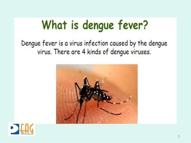 dengue haemorrhagic fever an overview Viral haemorrhagic fever- dengue and ebola  a broad overview of vhf patophysiology from this 2013 review article  dengue haemorrhagic fever.