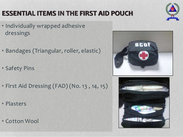 ESSENTIAL ITEMS IN THE FIRST AID POUCH • Individually wrapped adhesive dressings • Bandages (Triangular, roller, elastic) ...