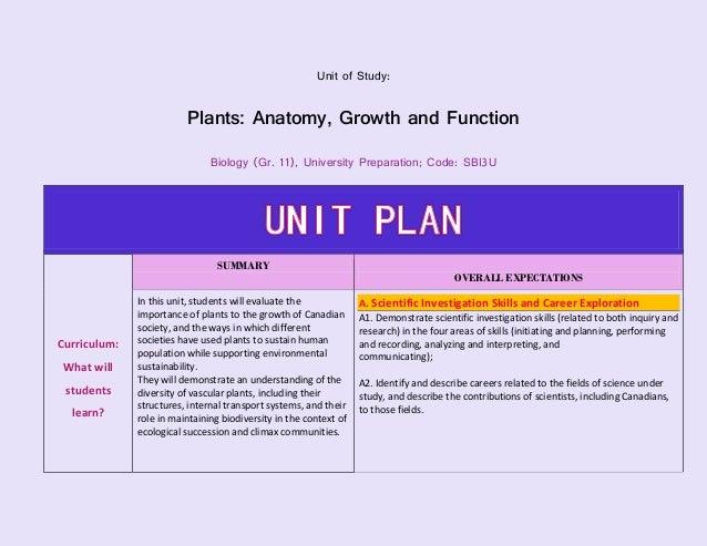 1 1 unit plan