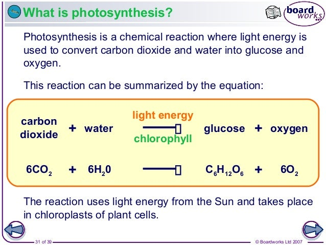 © Boardworks Ltd 200731 of 39 What is photosynthesis? Photosynthesis is a chemical reaction where light energy is used to ...
