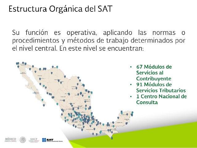 Estructura Organizacional Y Funcional Del Sat