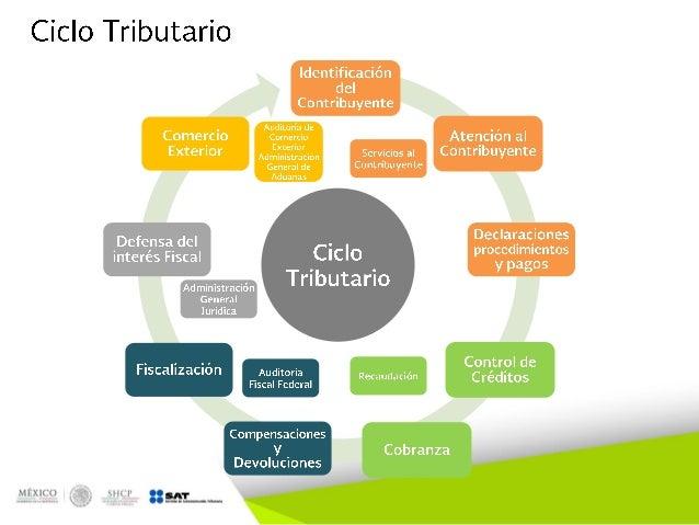 Estructura organizacional y funcional del sat for Oficina del contribuyente