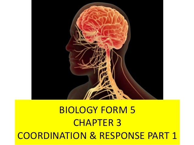 PART 1 BIOLOGY FORM 5 CHAPTER 3 COORDINATION & RESPONSE PART 1