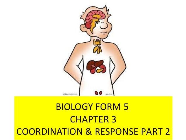 BIOLOGY FORM 5 CHAPTER 3 COORDINATION & RESPONSE PART 2