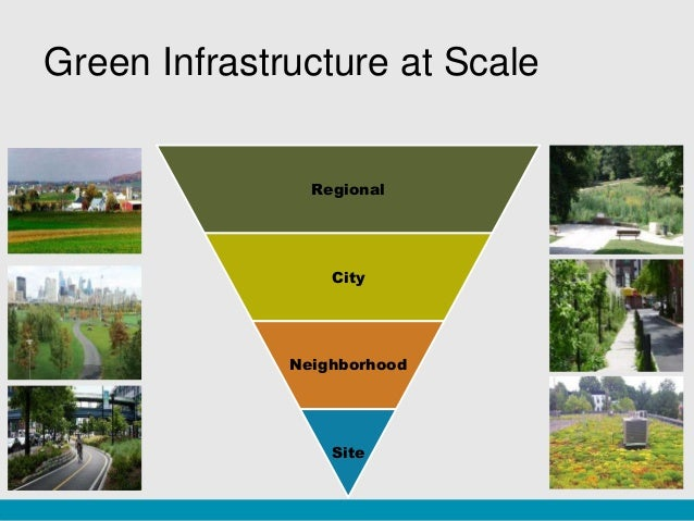Urban planning and the importance of green space in cities to human and environmental health
