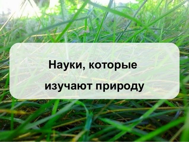 Науки, которые изучают природу