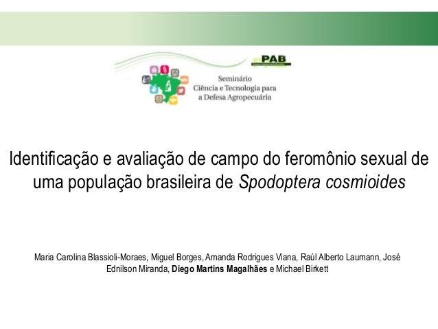 Identificação e avaliação de campo do feromônio sexual de uma população brasileira de Spodoptera cosmioides Maria Carolina...