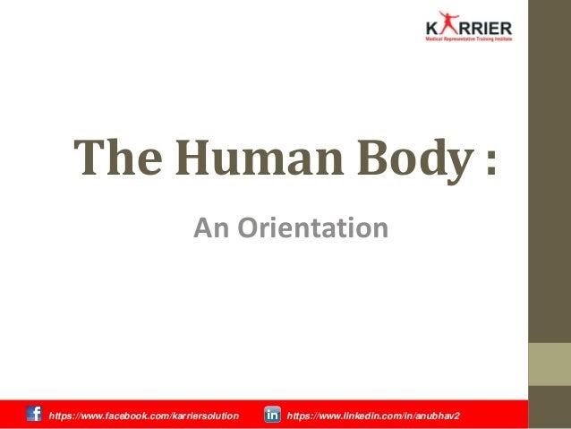 The Human Body : An Orientation https://www.facebook.com/karriersolution https://www.linkedin.com/in/anubhav2
