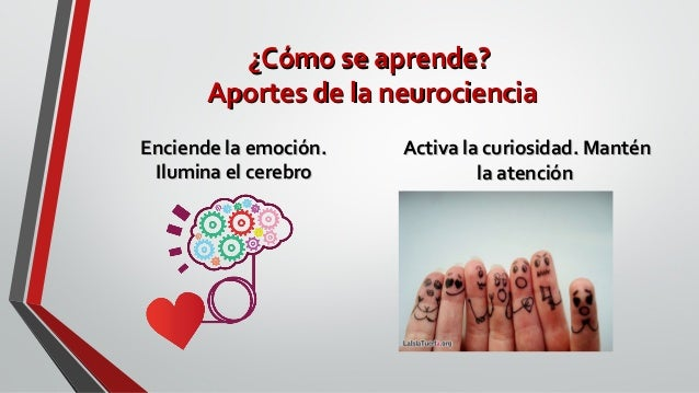 ¿Cómo se aprende?¿Cómo se aprende? Aportes de la neurocienciaAportes de la neurociencia Enciende la emoción.Enciende la em...