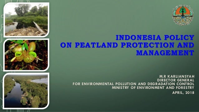 INDONESIA POLICY ON PEATLAND PROTECTION AND MANAGEMENT M.R KARLIANSYAH DIRECTOR GENERAL FOR ENVIRONMENTAL POLLUTION AND DE...