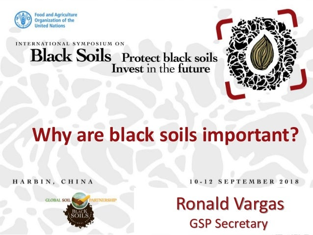 Why are black soils important? Ronald Vargas GSP Secretary