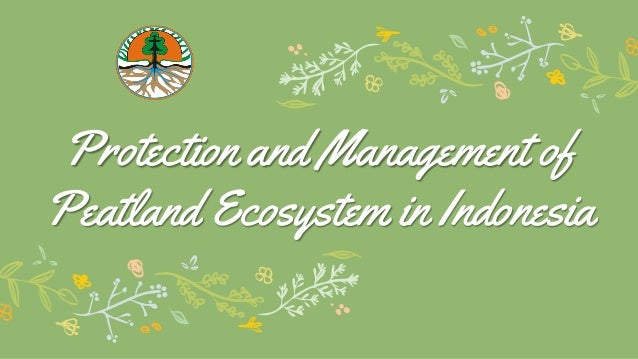 Protection and Management of Peatland Ecosystem in Indonesia