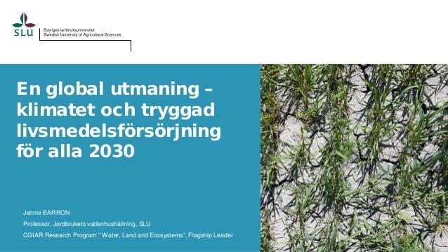 En global utmaning – klimatet och tryggad livsmedelsförsörjning för alla 2030 Jennie BARRON Professor, Jordbrukets vattenh...