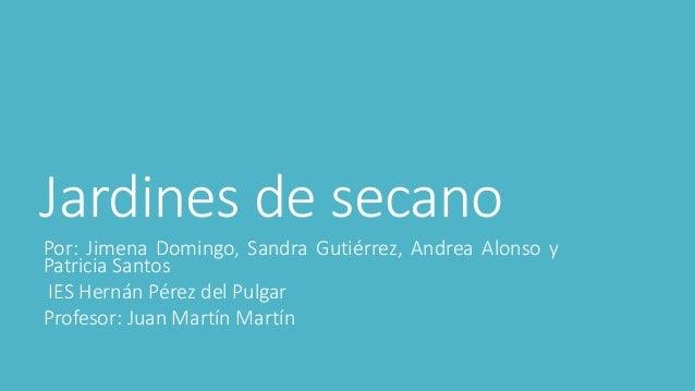Jardines de secano Por: Jimena Domingo, Sandra Gutiérrez, Andrea Alonso y Patricia Santos IES Hernán Pérez del Pulgar Prof...