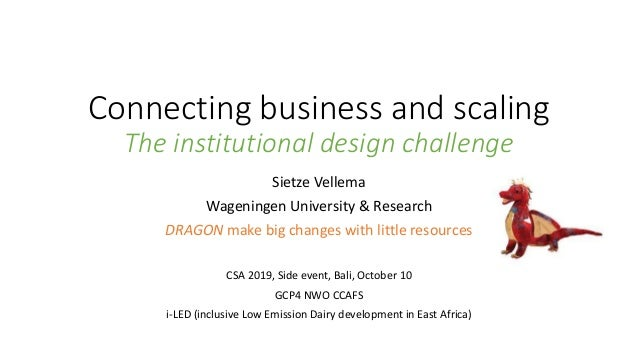 Connecting business and scaling The institutional design challenge Sietze Vellema Wageningen University & Research DRAGON ...