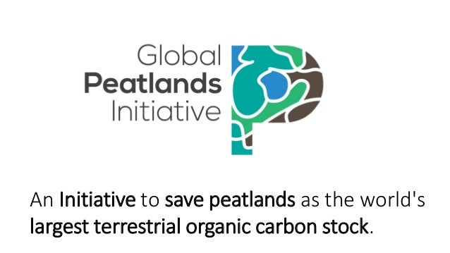 An Initiative to save peatlands as the world's largest terrestrial organic carbon stock.
