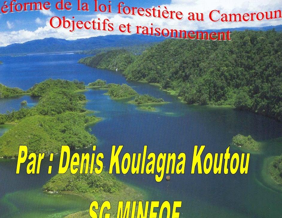 BIENVENUE       AU   CAMEROUN L'AFRIQUE EN MINIATURE