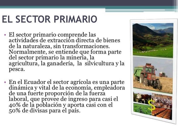 1.1 sectores primario, secundario y terciario