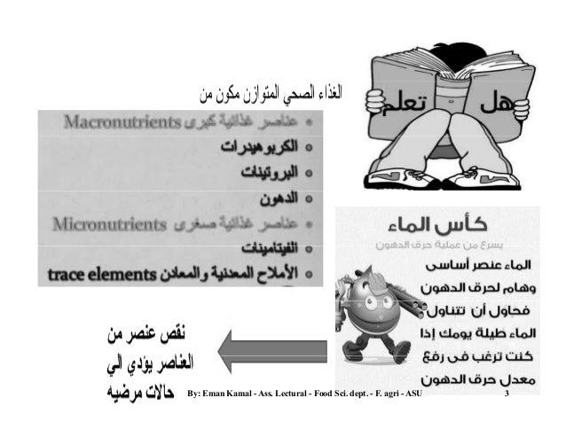 Human Nutrition Basics Slide 3