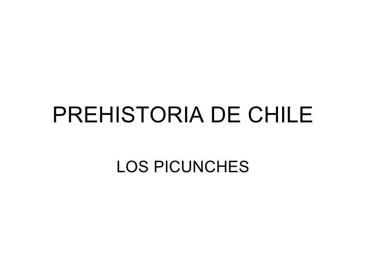 PREHISTORIA DE CHILE LOS PICUNCHES